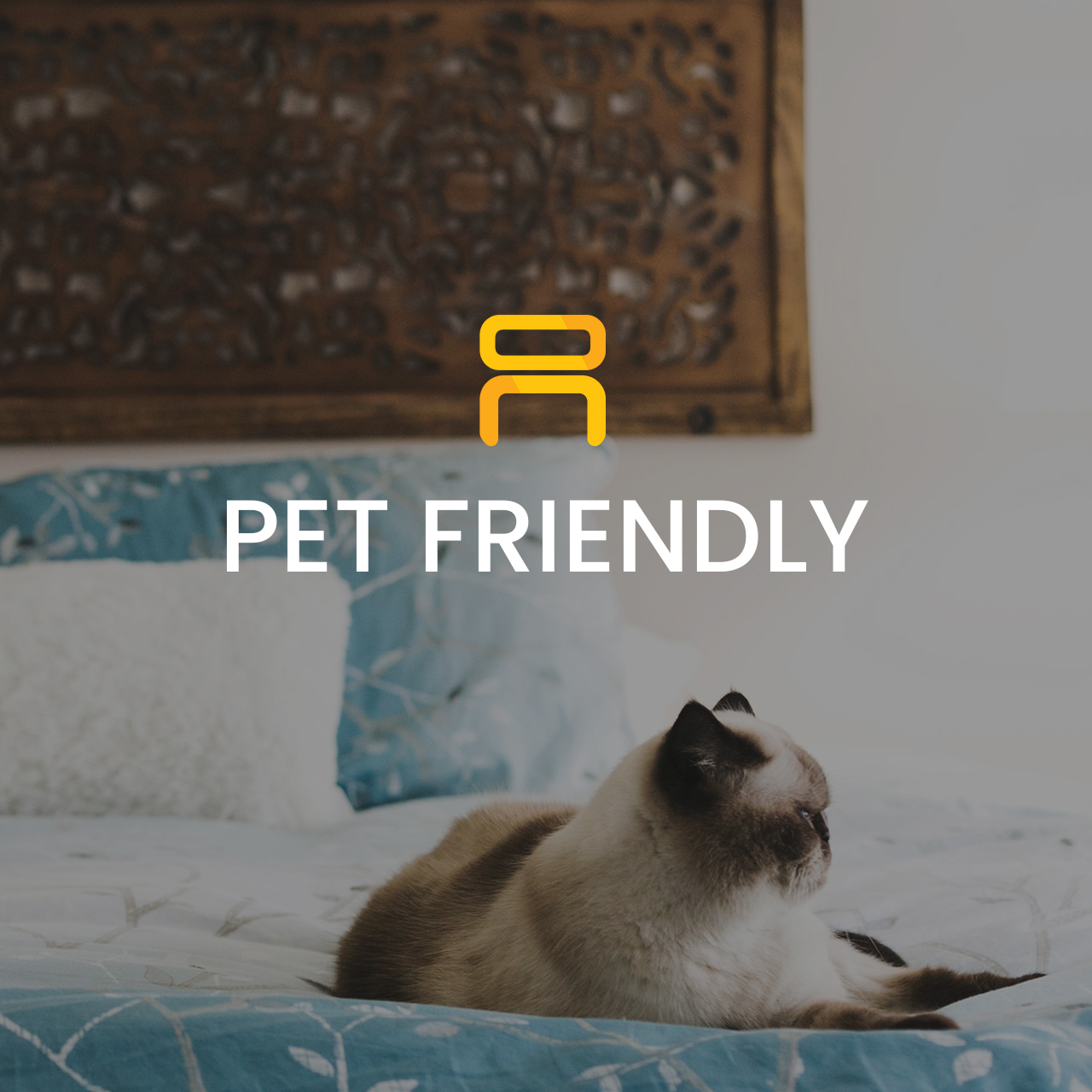 Pet Friendly Furniture