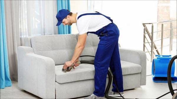 professional sofa cleaner