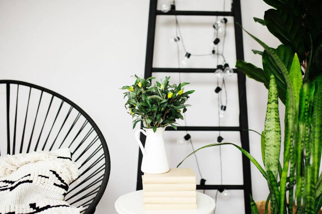 green, white and black furniture